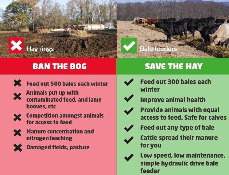 Ban the bog-216011-edited