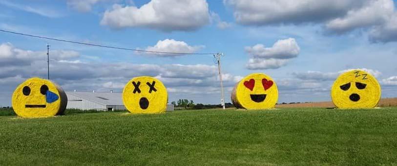 emoji-bales.jpg