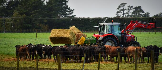 round-and-square-bale-feeder.jpg