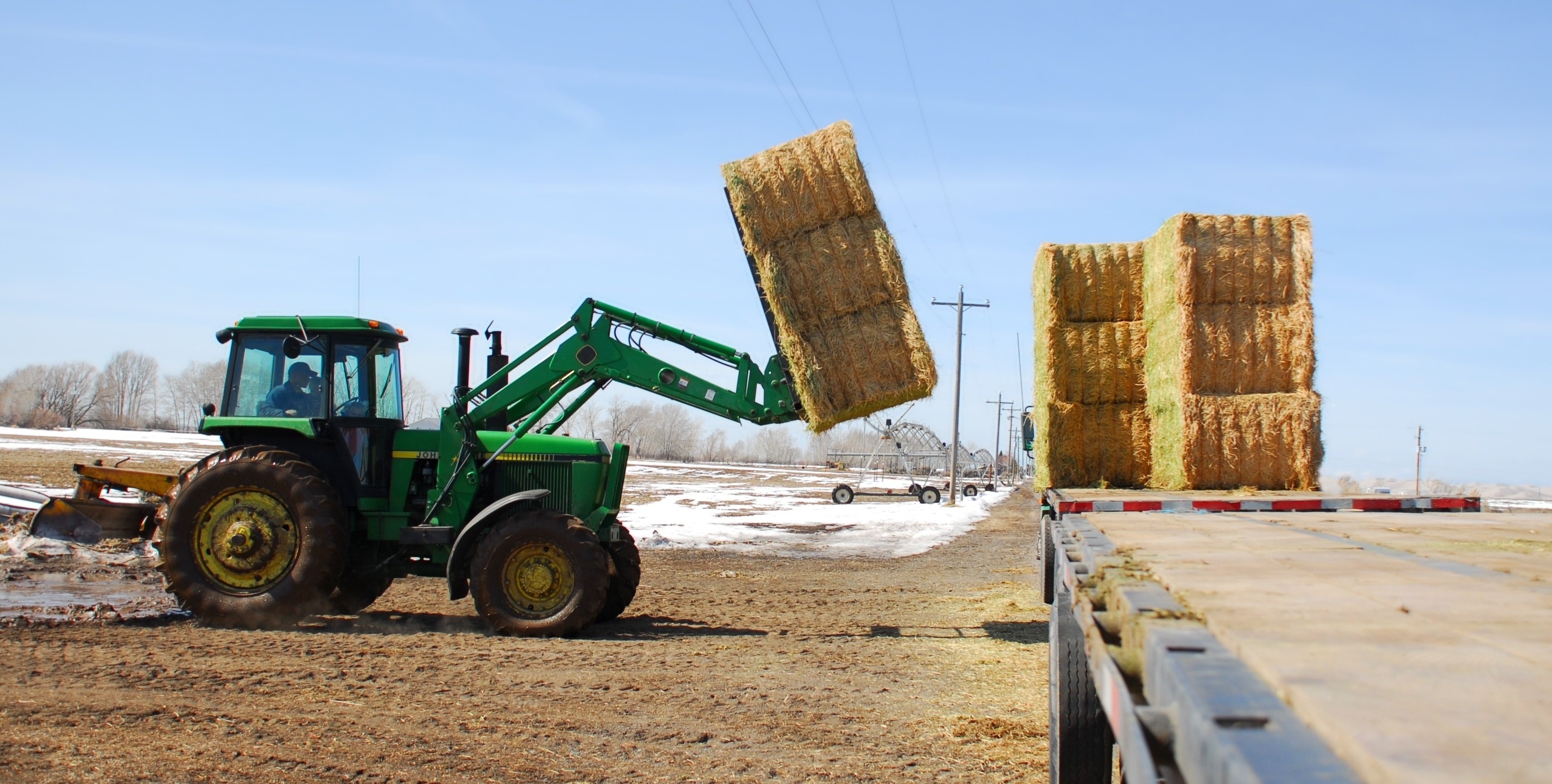 square bales-351873-edited.jpg